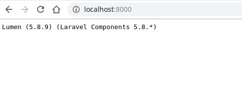 API runs locally